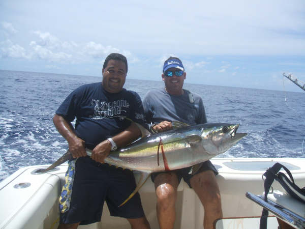 yellowfin01.jpg